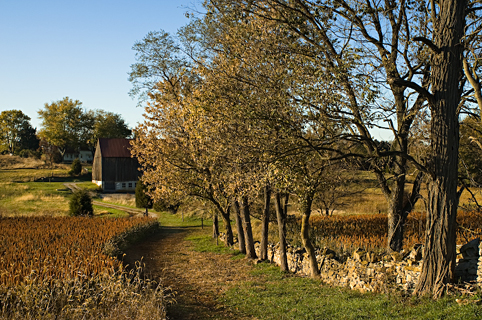Antietam NBP - Roulette Farm, Fall 2009.