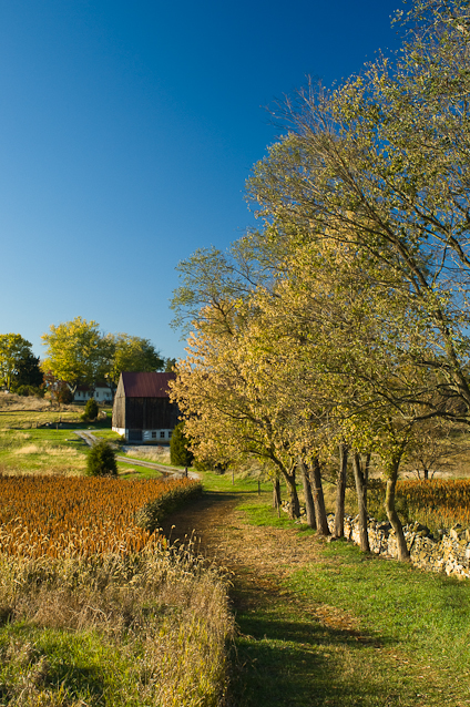 Roulette Farm, Autumn, Antietam Battlefield, Sharpsburg, Marylan