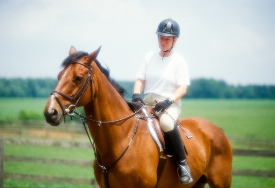 Horse And Rider, Soft, Bascule Farm, Poolesville, Maryland, Summ