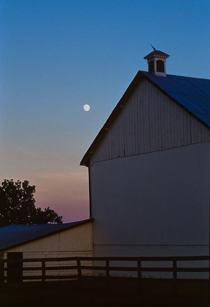 Dusk, Bascule Farm, Poolesville, Maryland, Summer, 2001