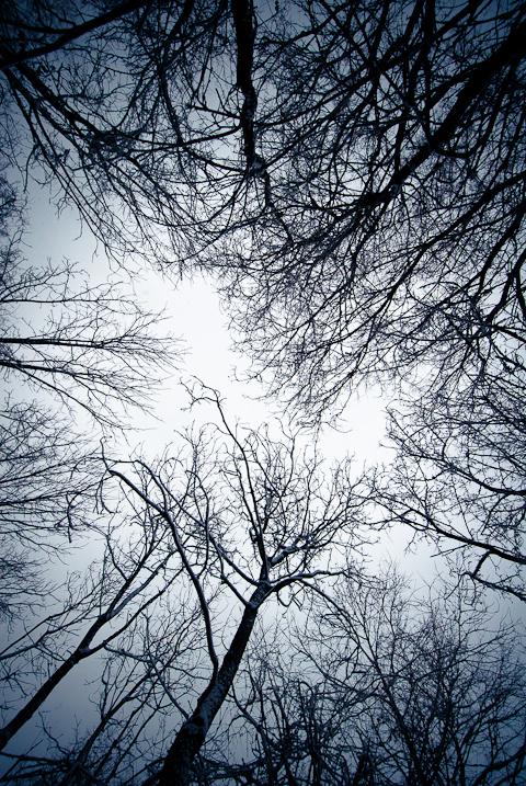 Witch's Vortex, Snow Day, Hunter Hill, Hagerstown, Maryland, Dec
