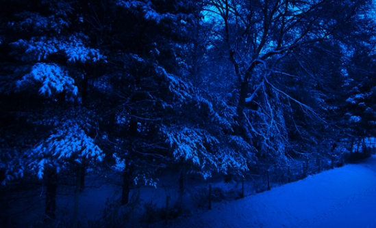Blue Hour, Snow Day, Hunter Hill, Hagerstown, Maryland, December