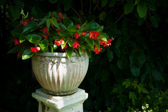 Surreybrooke Gardens, Middletown, Maryland, June 22, 2015