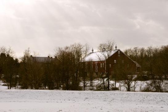 Dusting, Winter, Western Maryland, January 2, 2010