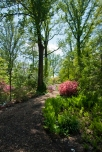 Brookside Gardens, Silver Spring, Maryland, May 2, 2016