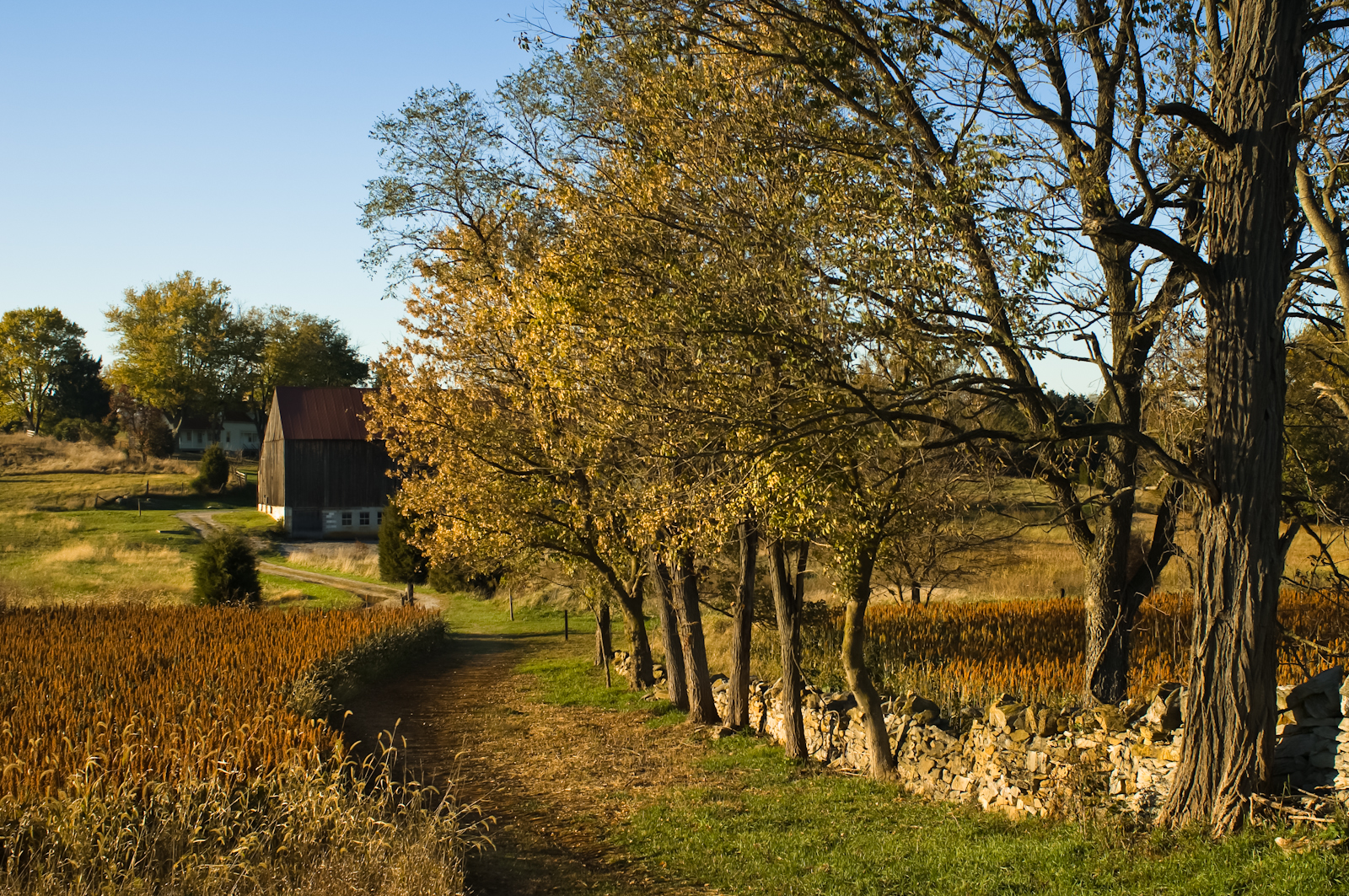 Roulette Farm, Autumn, Antietam National Battlefield Park, Sharp
